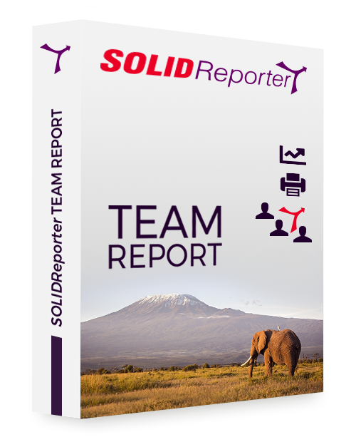 SOLIDReporter TEAM REPORT 2021