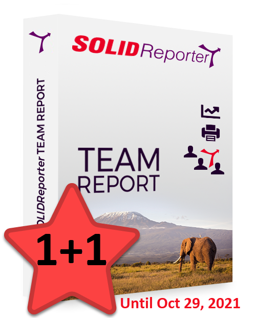 Happy Days 1+1 for SOLIDReporter TEAM REPORT 2021